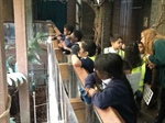 Year 3 visit to London Zoo